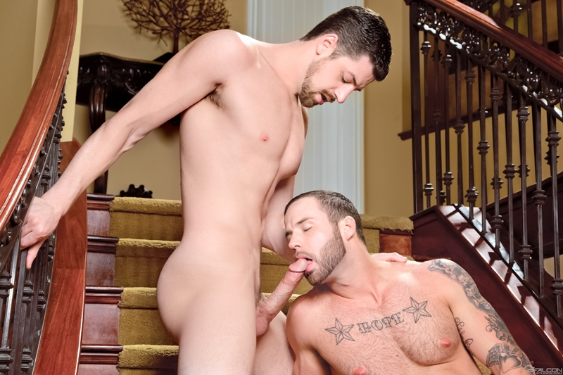 falcon studios  Chris Bines and Andrew Stark