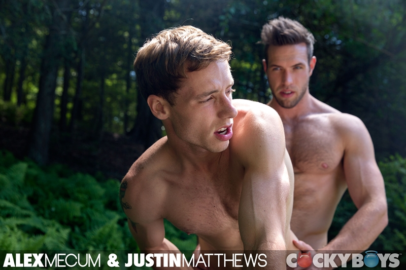Cockyboys-Alex-Mecum-jerking-off-dominant-rough-hairy-Justin-Matthews-blowjob-cocksucking-ass-rimming-young-dicks-cum-loads-fucks-012-gay-porn-video-porno-nude-movies-pics-porn-star-sex-photo