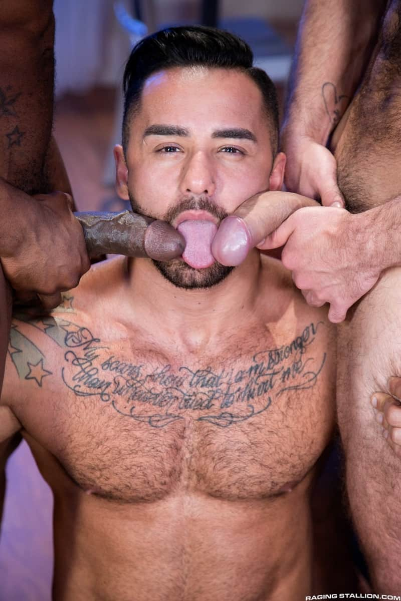 Men for Men Blog RagingStallion-Bruno-Bernal-Max-Konnor-Papi-Suave-sucks-massive-thick-big-black-dicks-cocksucker-anal-ass-fucking-009-gay-porn-pictures-gallery Bruno Bernal sucks down hard on both Max Konnor and Papi Suave's massive thick dicks Raging Stallion  tongue Streaming Gay Movies Smooth ragingstallion.com RagingStallion Tube RagingStallion Torrent RagingStallion Papi Suave RagingStallion Max Konnor RagingStallion Bruno Bernal raging stallion premium gay sites Porn Gay Papi Suave tumblr Papi Suave tube Papi Suave torrent Papi Suave RagingStallion com Papi Suave pornstar Papi Suave porno Papi Suave porn Papi Suave penis Papi Suave nude Papi Suave naked Papi Suave myvidster Papi Suave gay pornstar Papi Suave gay porn Papi Suave gay Papi Suave gallery Papi Suave fucking Papi Suave cock Papi Suave bottom Papi Suave blogspot Papi Suave ass nude RagingStallion naked RagingStallion naked man Max Konnor tumblr Max Konnor tube Max Konnor torrent Max Konnor RagingStallion com Max Konnor pornstar Max Konnor porno Max Konnor porn Max Konnor penis Max Konnor nude Max Konnor naked Max Konnor myvidster Max Konnor gay pornstar Max Konnor gay porn Max Konnor gay Max Konnor gallery Max Konnor fucking Max Konnor cock Max Konnor bottom Max Konnor blogspot Max Konnor ass jockstrap jock hot naked RagingStallion Hot Gay Porn hole HIS gay video on demand gay vid gay streaming movies Gay Porn Videos Gay Porn Tube Gay Porn Blog Free Gay Porn Videos Free Gay Porn face Cock cheeks cheek Bruno Bernal tumblr Bruno Bernal tube Bruno Bernal torrent Bruno Bernal RagingStallion com Bruno Bernal pornstar Bruno Bernal porno Bruno Bernal porn Bruno Bernal penis Bruno Bernal nude Bruno Bernal naked Bruno Bernal myvidster Bruno Bernal gay pornstar Bruno Bernal gay porn Bruno Bernal gay Bruno Bernal gallery Bruno Bernal fucking Bruno Bernal cock Bruno Bernal bottom Bruno Bernal blogspot Bruno Bernal ass ass