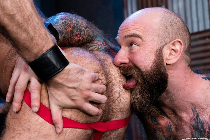 Men for Men Blog Teddy-Bear-fucked-Jack-Dixon-Hairy-muscle-hunks-huge-hard-cock-RagingStallion-010-gay-porn-pictures-gallery Hairy muscle hunks Teddy Bear fucked by Jack Dixon huge hard cock Raging Stallion